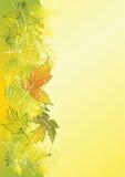 Fondo del otoño. Fotos de archivo