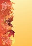 Fondo del otoño. Fotografía de archivo