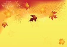 Fondo del otoño. Foto de archivo