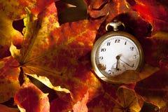Fondo del otoño. Imágenes de archivo libres de regalías