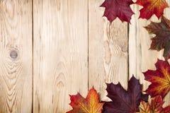Fondo del otoño imagen de archivo libre de regalías