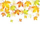 Fondo del otoño Imagen de archivo