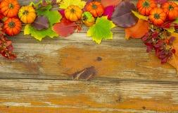 Fondo del otoño Imágenes de archivo libres de regalías