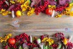 Fondo del otoño Bayas estacionales de la naturaleza del otoño, calabazas, manzanas, flores en el fondo de madera Todavía del otoñ Foto de archivo libre de regalías