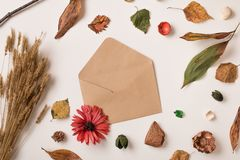 Fondo del otoño con el sobre abierto Fotografía de archivo