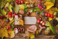 Fondo del otoño con la caja y la etiqueta de regalo Imagen de archivo