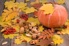 Fondo del otoño con la calabaza Fotografía de archivo libre de regalías