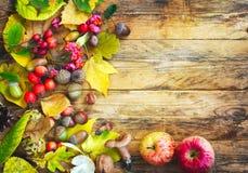 Fondo del otoño con la cosecha Imagenes de archivo