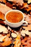 Fondo del otoño con la taza de café caliente sobre leav colorido del otoño Fotos de archivo libres de regalías