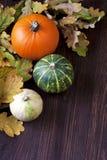 Fondo del otoño con las calabazas en el tablero de madera Foto de archivo