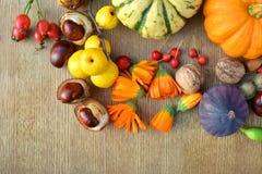 Fondo del otoño con las calabazas, las frutas y las nueces Fotografía de archivo