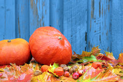 Fondo del otoño con las calabazas, las hojas y las pequeñas manzanas Imagenes de archivo