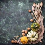 Fondo del otoño con las calabazas y las nueces Fotos de archivo libres de regalías