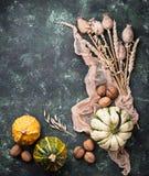 Fondo del otoño con las calabazas y las nueces Fotografía de archivo