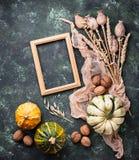 Fondo del otoño con las calabazas y las nueces Imágenes de archivo libres de regalías