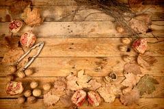Fondo del otoño con las granadas Foto de archivo libre de regalías