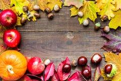 Fondo del otoño con las hojas coloridas concepto de la tarjeta de felicitación de la acción de gracias Fotos de archivo