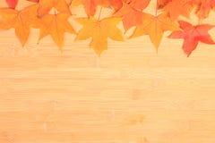 Fondo del otoño con las hojas de arce coloreadas en el tablero de madera Imagen de archivo libre de regalías