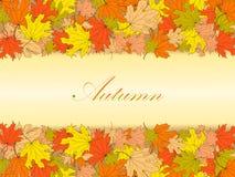 Fondo del otoño con las hojas de arce coloridas stock de ilustración