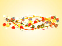 Fondo del otoño con las hojas de arce y las líneas coloridas Foto de archivo libre de regalías