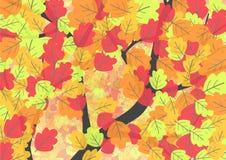 Fondo del otoño con las hojas del roble Fotografía de archivo libre de regalías