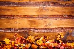 Fondo del otoño con las hojas, las bayas y las verduras en el cortejar Imagenes de archivo