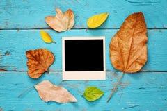 Fondo del otoño con las hojas secas y los marcos en blanco de la foto Foto de archivo libre de regalías