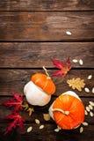 Fondo del otoño con las hojas y calabazas, acción de gracias y tarjeta de Halloween Foto de archivo libre de regalías