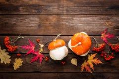Fondo del otoño con las hojas y calabazas, acción de gracias y tarjeta de Halloween Fotos de archivo libres de regalías