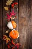 Fondo del otoño con las hojas y calabazas, acción de gracias y tarjeta de Halloween Imagenes de archivo
