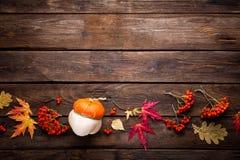 Fondo del otoño con las hojas y calabazas, acción de gracias y tarjeta de Halloween Fotos de archivo