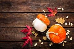 Fondo del otoño con las hojas y calabazas, acción de gracias y tarjeta de Halloween Fotografía de archivo libre de regalías