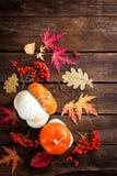 Fondo del otoño con las hojas y calabazas, acción de gracias y tarjeta de Halloween Imagen de archivo