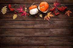 Fondo del otoño con las hojas y las calabazas Fotografía de archivo libre de regalías