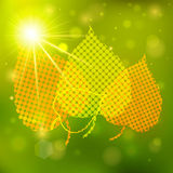Fondo del otoño con las luces y las hojas del amarillo Imagen de archivo