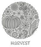 Fondo del otoño con las verduras y las flores creativas, fondo floral decorativo Imagen de archivo libre de regalías
