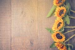 Fondo del otoño con los girasoles Visión desde arriba Efecto retro del filtro Imagenes de archivo