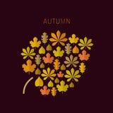 Fondo del otoño con los iconos de las hojas Fotografía de archivo libre de regalías