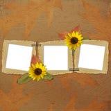 Fondo del otoño con los marcos y las flores Imagen de archivo
