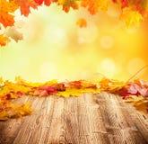 Fondo del otoño con los tablones de madera vacíos Fotografía de archivo