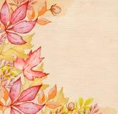 Fondo del otoño de la acuarela Imagen de archivo libre de regalías