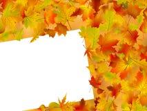 Fondo del otoño de la caída de la acción de gracias Fotografía de archivo libre de regalías