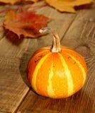 Fondo del otoño de la calabaza de la acción de gracias Fotos de archivo