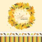 Fondo del otoño del roble, vector Fotos de archivo libres de regalías