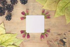 Fondo del otoño - marco de las hojas de otoño multicoloras con una hoja de papel para el texto en un fondo de madera Foto de archivo libre de regalías