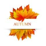 Fondo del otoño para el texto de la muestra Foto de archivo libre de regalías