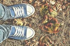 Fondo del otoño Piernas en los zapatos de gimnasio azules que se colocan en las hojas caidas coloridas Espacio libre para el text Fotografía de archivo libre de regalías
