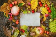 Fondo del otoño, tarjeta de felicitaciones Foto de archivo libre de regalías