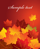 Fondo del otoño, vector Stock de ilustración