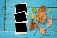 Fondo del otoño con las hojas secas y los marcos en blanco de la foto Fotos de archivo